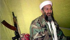 Při leteckém neštěstí v Anglii zahynuli příbuzní bin Ládina