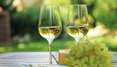 Víno z Pálavy je jedinečné kvůli půdě, tvrdí vinaři