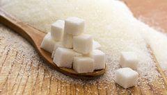 Cukr je stejný jed jako alkohol, tvrdí američtí vědci