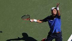 Berdych vstoupil do US Open vítězně