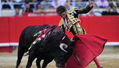 V Katalánsku padl poslední býk rukou toreadora