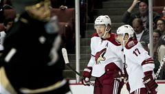 Erat a Hanzal skórovali v přípravě na NHL, ale k výhrám to nestačilo