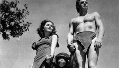 Šimpanz z filmů o Tarzanovi žil 80 let