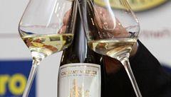 Nejlepším českým vínem je ryzlink z Valtic