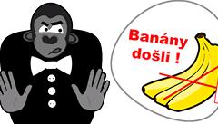 Kdo neskáče, je gorila, skandují naštvaní Slováci