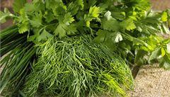Čerstvé bylinky: které vařit a které přidat až na závěr?