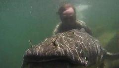 Rybář Vágner má další rekord. Ulovil rybu o váze 87 kilogramů