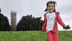 Školky by mohly mít lesní třídy. Na výuku přispěje stát
