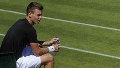 Berdych se utká s Darcisem, Kvitová s Bondarenkovou