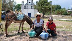 Mexičtí Tojolobalové: Mayové, o kterých se nemluví