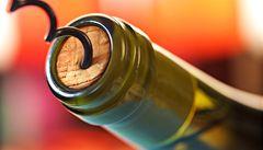 České víno z Mikulova zabodovalo v Izraeli