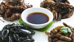 Michelinský kuchař začal vařit hmyz. Měl by ho jíst každý, tvrdí