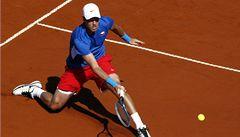 Berdych: Finále Davis Cupu bude mým vrcholem kariéry