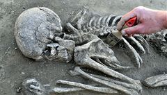 Archeologové našli lidské ostatky. Zřejmě oběti napoleonských válek