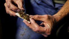 Marihuanové dolary nesmrdí. USA řeší, jak je legálně vyprat