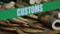 Hongkong zabavil nelegální slonovinu za 27 milionů korun