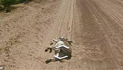 Zabil Google osla? Nasvědčuje tomu záznam z jejich map