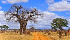 Tanzánie nebo Toronto? Tipy, kam v zimě vyrazit na dovolenou