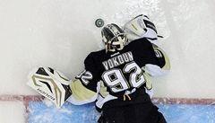 Vokoun vychytal 11. výhru Penguins v řadě a zaznamenal asistenci