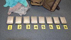 Celníci odhalili rekordních 31 kilogramů kokainu za 60 milionů