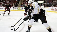 Dva Evropané bojují o rekordy NHL. Jágr je neuvěřitelný, říká Selänne
