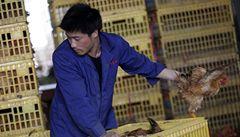 První potvrzený případ. V Číně se přenesl vir H7N9 mezi lidmi