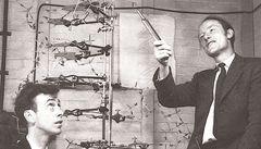 Nobelovka genetika Cricka jde do dražby