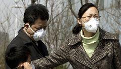 Čína hlásí první případ ptačí chřipky této zimy. Žena je v kritickém stavu