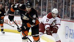 VIDEO: Vrbata si hattrickem zpříjemnil závěr letošní sezony NHL