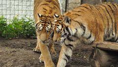 Kostarika zrušila zoologické zahrady. Chce tím chránit zvířata