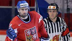 Další posila pro hokejový Třinec: do extraligy se vrací Irgl