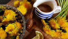 Krok za krokem: zkuste pampeliškový 'med'