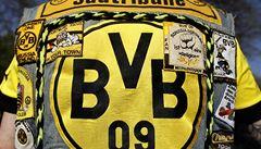 Zvířata věří ve finále LM Dortmundu. Věštil tapír, orangutan i vydry