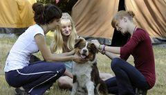 V Mikulášovicích najdete tábor, kam mohou děti vzít svá zvířata