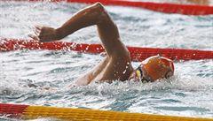 Česká naděje. Talentovaný plavec Micka překonal Svobodu