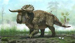Američtí vědci objevili nového dinosaura s velkými rohy