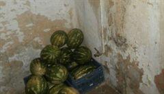 Suchý záchod a plíseň na stěnách. Inspekce zavřela vietnamskou večerku
