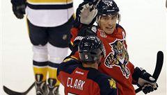 Příprava NHL: Fleischmann zařídil výhru, Hertl poprvé bodoval