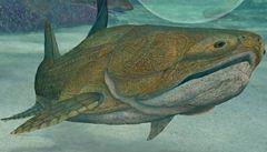 V Číně nalezli fosilii nejstaršího živočicha s 'obličejem'