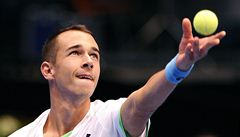 Rosol si druhé finále ve Vídni nezahraje. Nestačil na veterána Haase