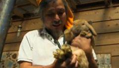 Japonec se u Fukušimy stará o opuštěná zvířata