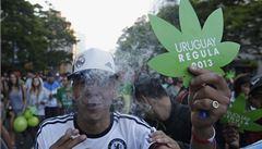 Uruguay - první země světa, kde je marihuana zcela legální