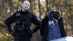 Letošní policejní záhady? Krádež naloženého selete a pátrání po Křemílkovi