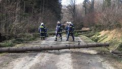 Vítr v Česku kácel stromy a ničil střechy. Přijde nejspíš i ve čtvrtek