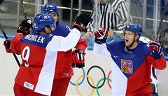 Turnaj nejlepších po americku. Světový pohár může zničit olympijský hokej