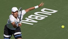 Na prestižním turnaji v Dubaji jdou dál Berdych, Štěpánek i Rosol