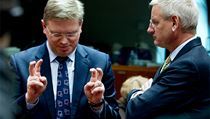 Czech EU Commissioner Štefan Füle (left) with Swedish foreign minister Carl Bildt — an advocate of tough sanctions against Belarus — at EU Foreign Affairs Council