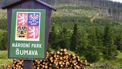 Pozor na padající stromy, varují zaměstnanci šumavského parku turisty