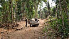 Kdo likviduje amazonské pralesy?