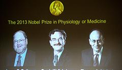 Nobelova cena: Jak se v buňkách přesouvají proteiny